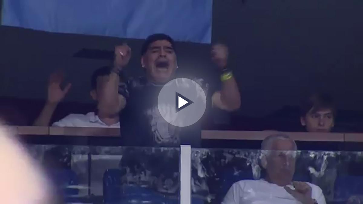 Maradona celebra la victoria de Del Potro ante Cilic en la Copa Davis. (Davis Cup)