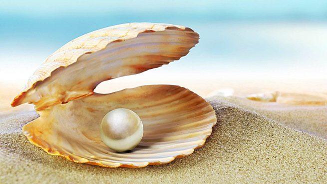 C mo se forman las perlas for Como se cocinan las gambas