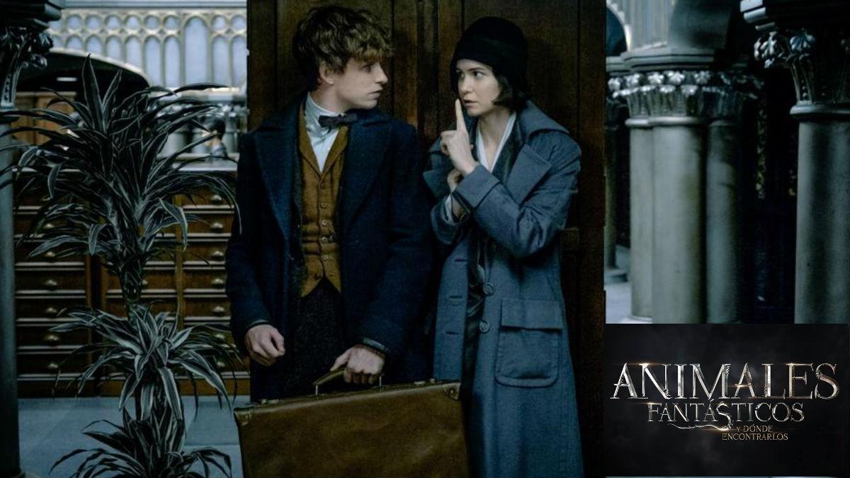 El protagonista Eddie Redmayne es el mago Scamander en 'Animales Fantásticos y dónde encontrarlos', la nueva película del universo Harry Potter.