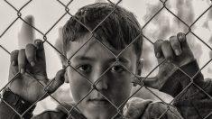 Descubre los datos del hambre en el mundo, una realidad mundial desconocida