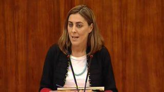 La portavoz de Podemos en la Asamblea de Madrid, Lorena Ruiz-Huerta (Foto: Youtube)