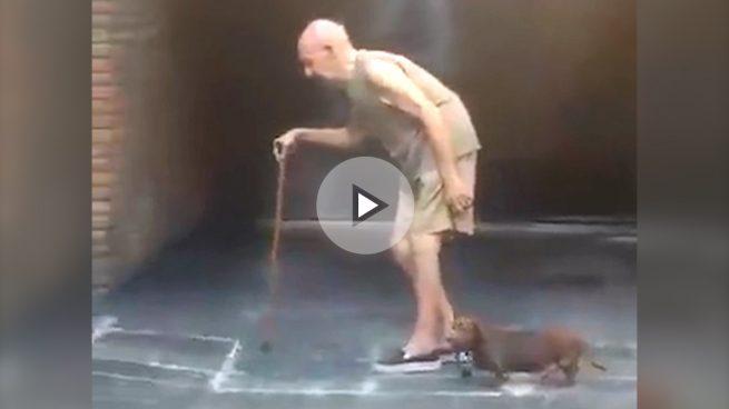 El perro más paciente y fiel del mundo se hace viral