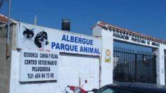Entrada de la 'protectora' de animales Parque Animal de Torremolinos