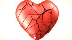 5 curiosidades sobre el sistema circulatorio que no conocías