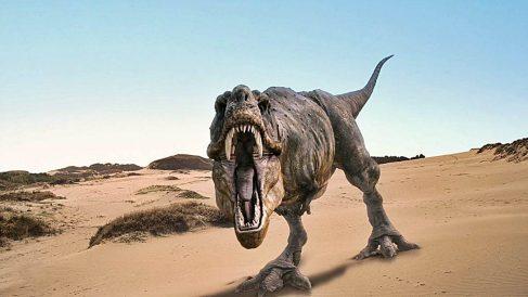 Curiosidades sobre el Tiranosaurio Rex