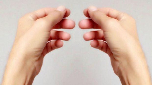 huesos de las mano