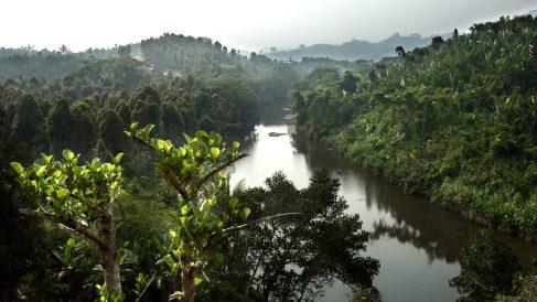 Vista del río Mananara en Madagascar (Foto: AFP).