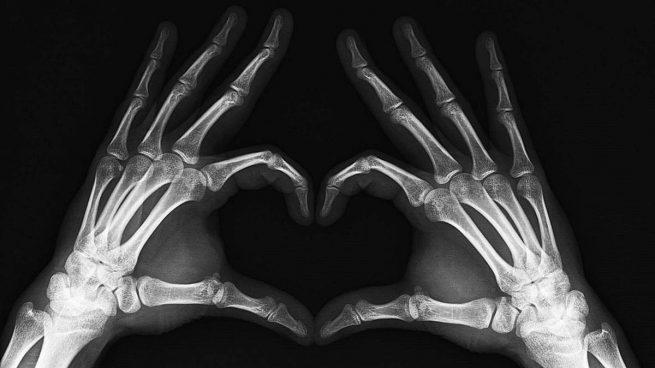 Huesos de la mano: ¿Cuántos hay y cuáles son?