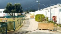 Imagen del asentamiento de colonos israelíes de Amona, en Cisjordania.