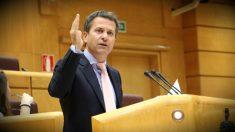 El portavoz del PNV en el Senado, Jokin Bildarratz.