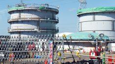 Central nuclear de Fukushima. (Foto: AFP)