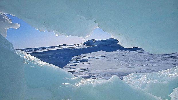 Ártico Antártico diferencias a