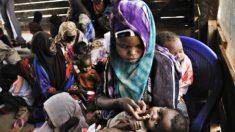 Una mujer somalí alimenta a uno de sus hijos, nacidos en el campo de refugiados de Dadaab. (Foto: Lynsey Addario/MSF)