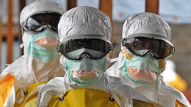 fin del mundo teorias creibles pandemia