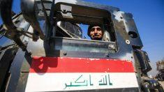 Un miembro de las fuerzas rebeldes iraquíes que combaten contra el Estado Islámico en Mosul (Irak). Foto: AFP