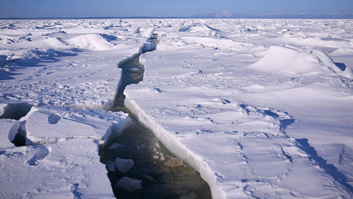 El Ártico y el Antártico tienen varias diferencias muy marcadas