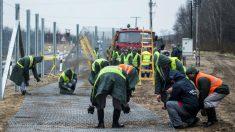 Trabajos de construcción de la segunda fase de vallas en la frontera de Hungría y Serbia. (Getty)