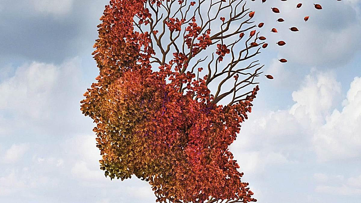 Neurogénesis: Formas de regenerar neuronas