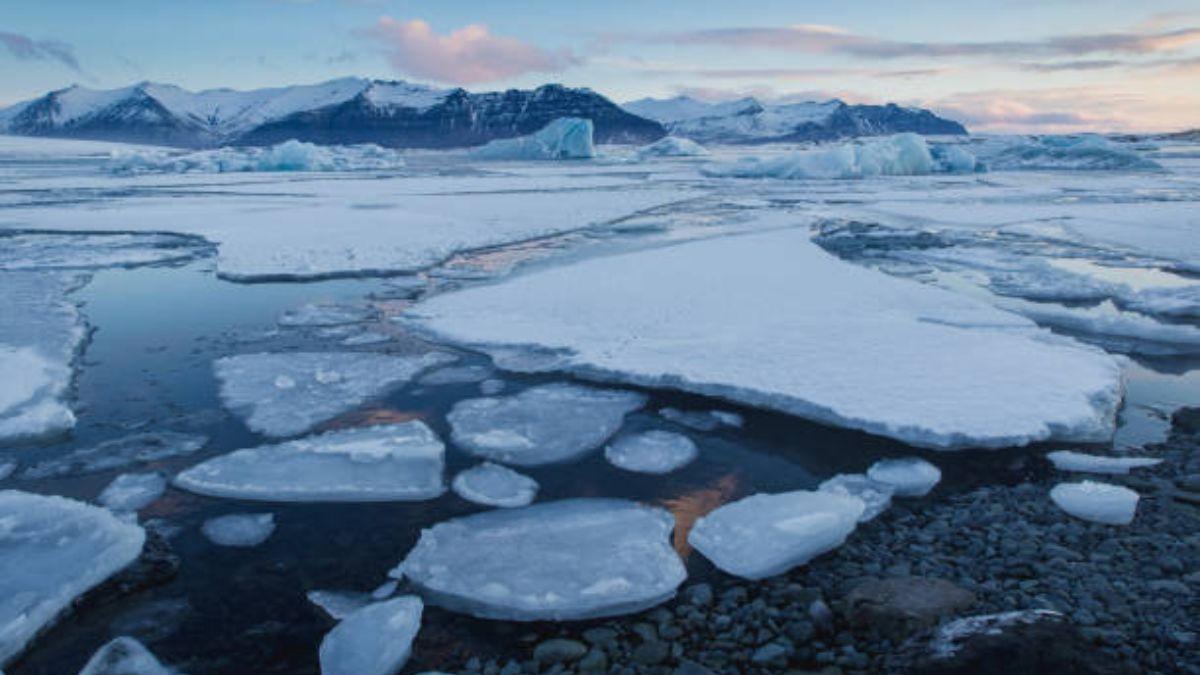 Las causas y remedios ante el calentamiento global