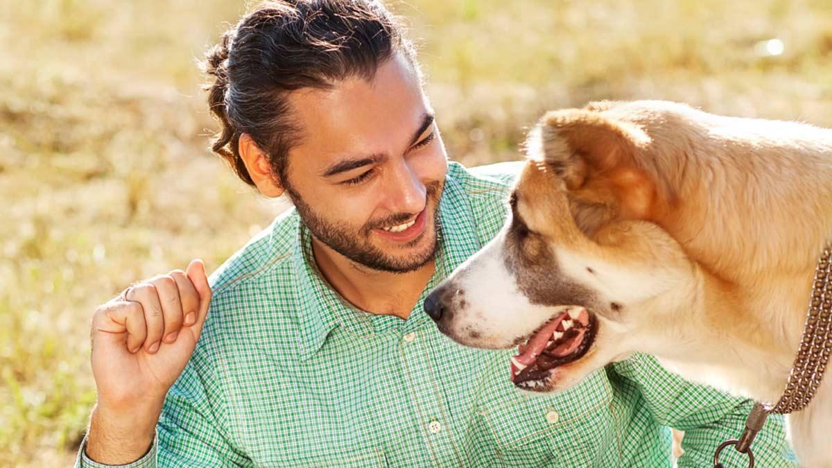 Gudog, la start up que ofrece pisos turísticos para perros por 10€ la noche