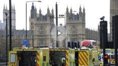 Varias ambulancias frente al parlamento británico tras el atentado terrorista de Londres (Foto:AFP)