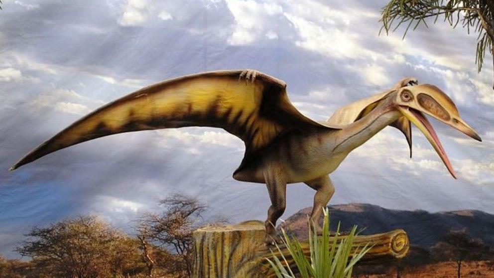 Los científicos han estudiado durante siglos la vida, mente y cuerpo de los dinosauros.