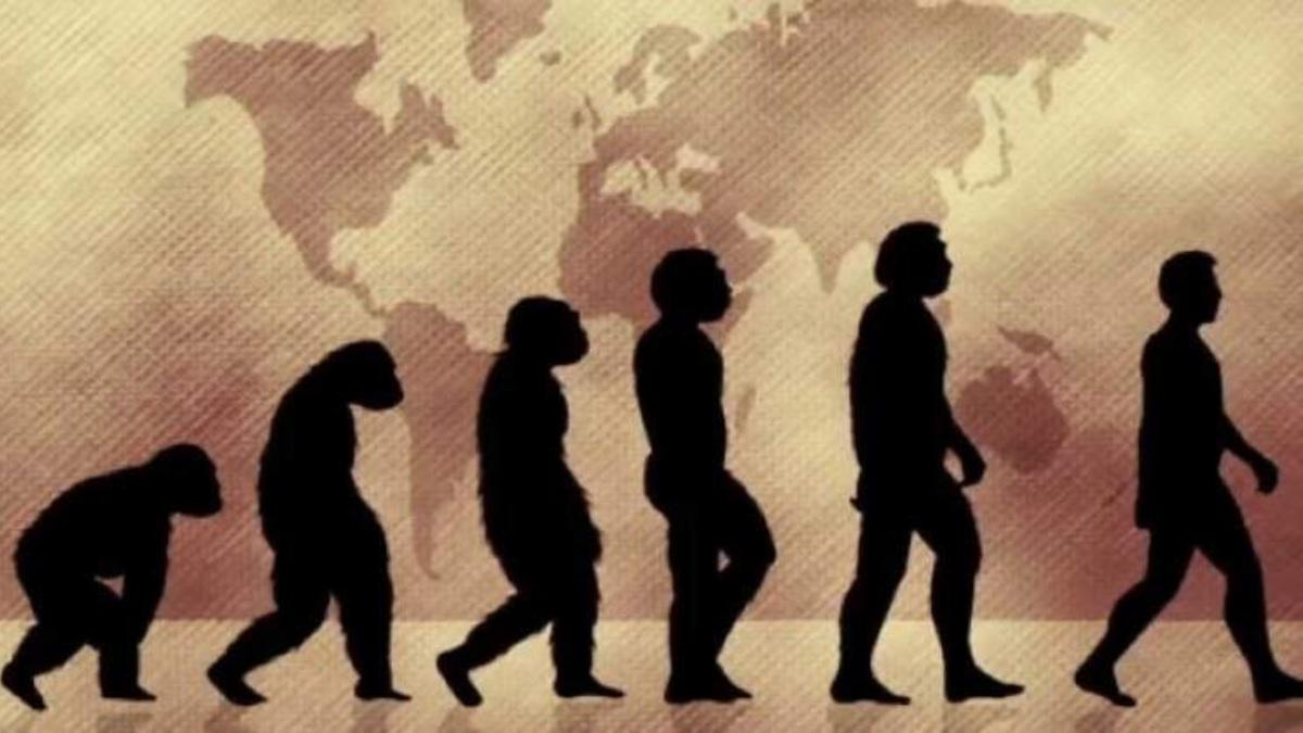 ¿Cuál es el origen del hombre?