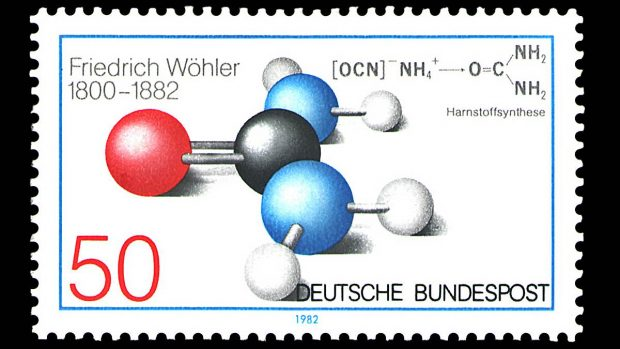 Composicion quimica de los seres vivos yahoo dating