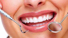 ¿Cómo funcionan los dientes?
