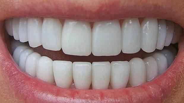 Cómo funcionan los dientes?