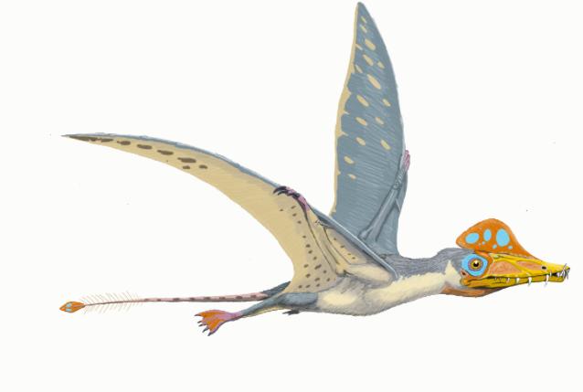 Dinosaurio Scaphognathus
