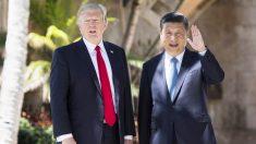 Donald Trump junto a Xi Jinping. (Foto: AFP)