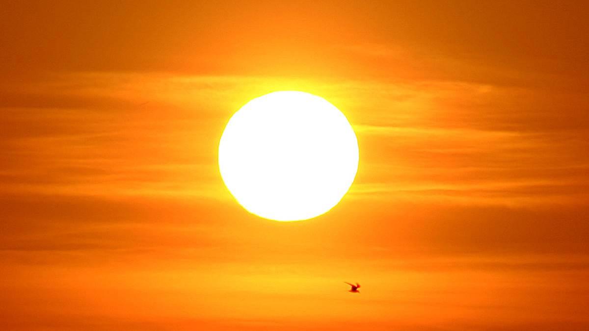 Sol.De