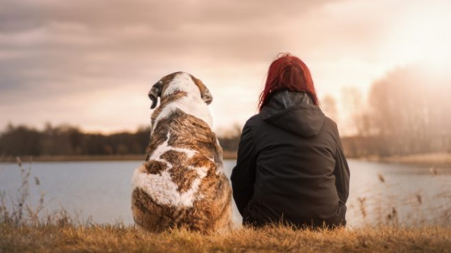 ¿Por qué los perros son el mejor amigo del ser humano?