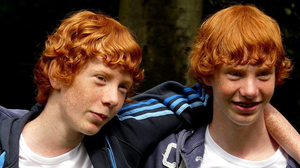 Descubre curiosidades sobre los gemelos