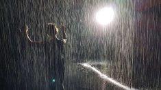Descubre por qué la lluvia huele tan bien