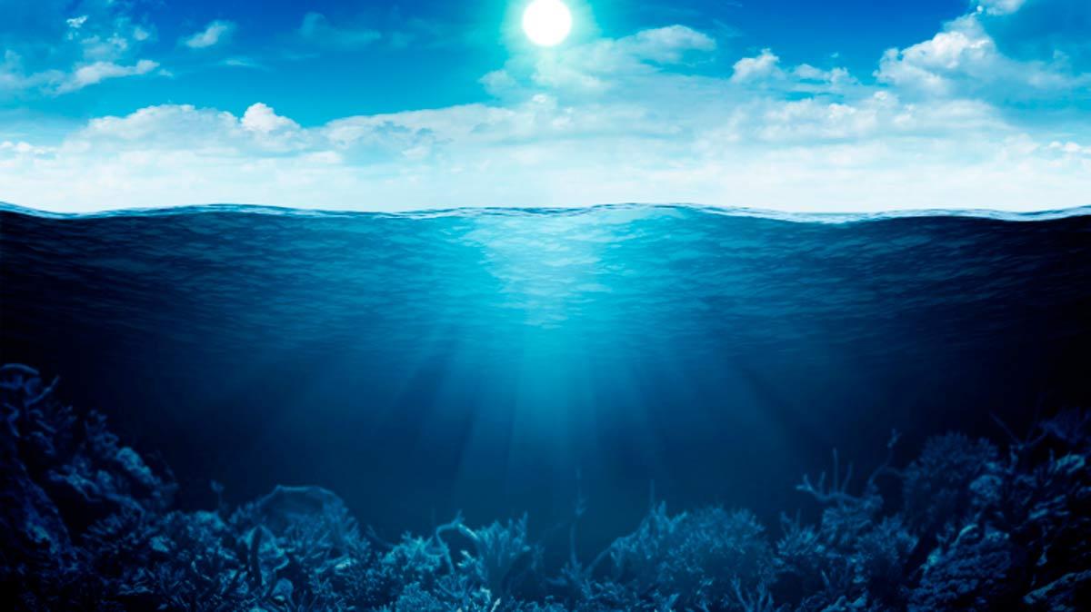 Los 5 monstruos reales de las profundidades marinas