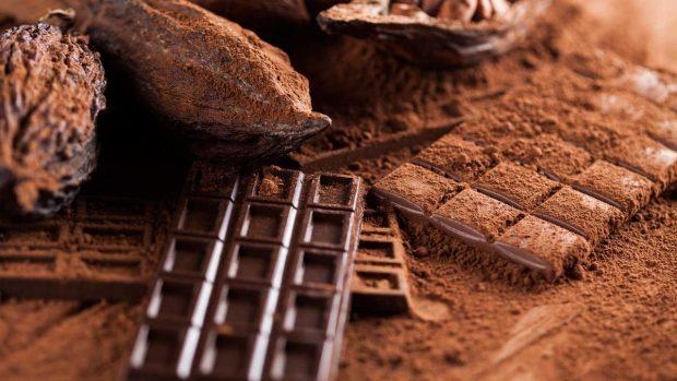 cacao con una tableta de chocolate