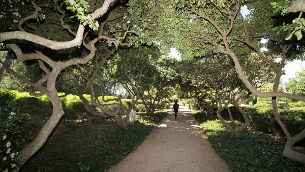 Los jardines del palacio de marivent abren sus puertas a for Jardines de marivent