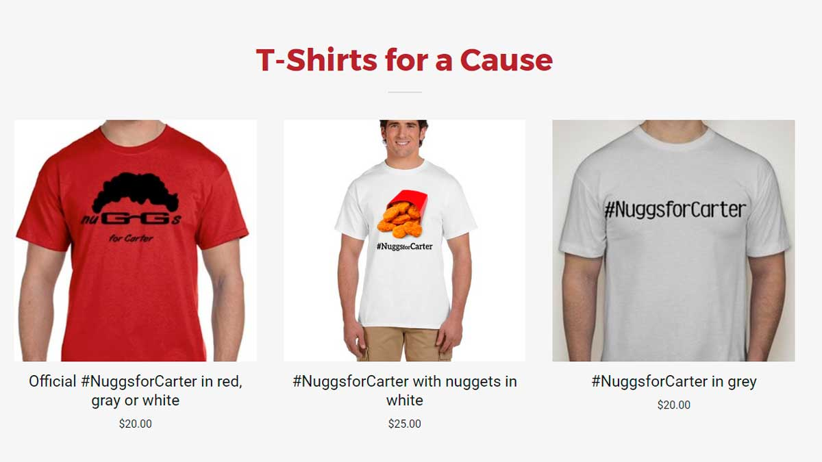 Página web nuggsforcarter.com