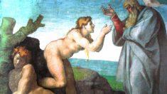 Eva, según la Biblia, nació de una costilla de Adán