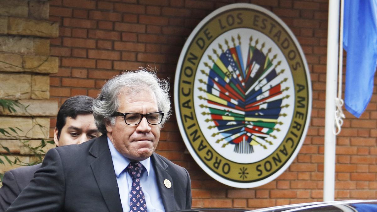 Luis Almagro. (Foto: AFP)
