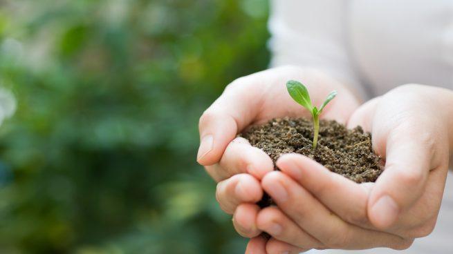 Cmo cuidar el medio ambiente en 5 sencillos pasos 5 sencillos pasos para ayudar a salvar nuestro planeta cuidar el medio ambiente thecheapjerseys Choice Image