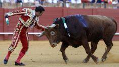 Antonio Ferrera toca la cabeza del toro, este sábado en Sevilla (Foto: Efe).