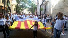 Asistentes a la manifestación portan una gran bandera de la Comunidad valenciana