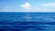 ¿Cuál es la densidad del agua del mar?