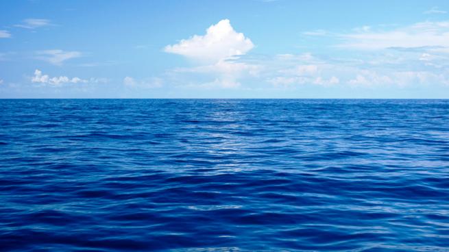 Cuál es la densidad del agua del mar?