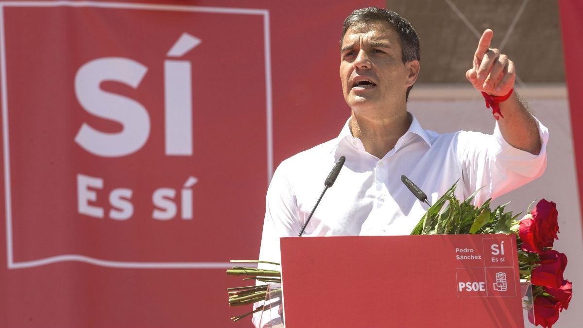 El ex secretario general del PSOE y candidato a las primarias, Pedro Sánchez (Foto: Efe)