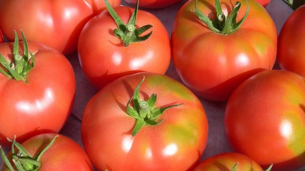 El tomate: ¿Es una fruta o una verdura?