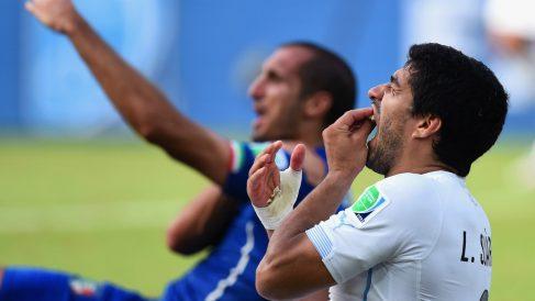 Luis Suárez se duele tras morder a Chiellini. (Getty)